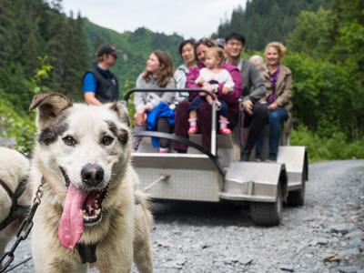 Dog Sled Tour Alaska - guests on the dog sled tour
