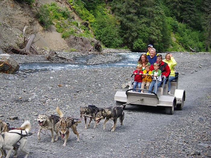 Wilderness Alaska Dog Sledding - Seward Alaska Tours - Summer Tours