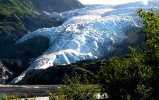 Exit Glacier Tour - Seward Tours - Alaska Dog Sledding Tour - things to do in seward alaska