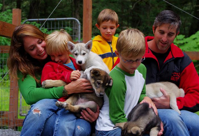 Alaska Dog Sledding - Cuddling with puppies - Alaska Summer tours