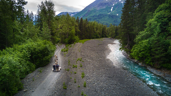 overview of guest on dog sled tour with the view from the trail in seward alaska