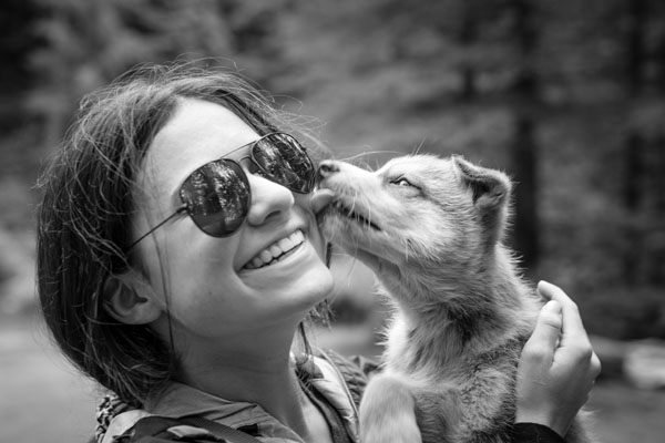 one of the dog sled tour guests getting licked by a puppy from the ididaride kennel
