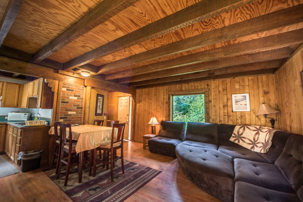 Down stairs Seward Alaska Family Cabin with couch, kitchen and table for family dinners