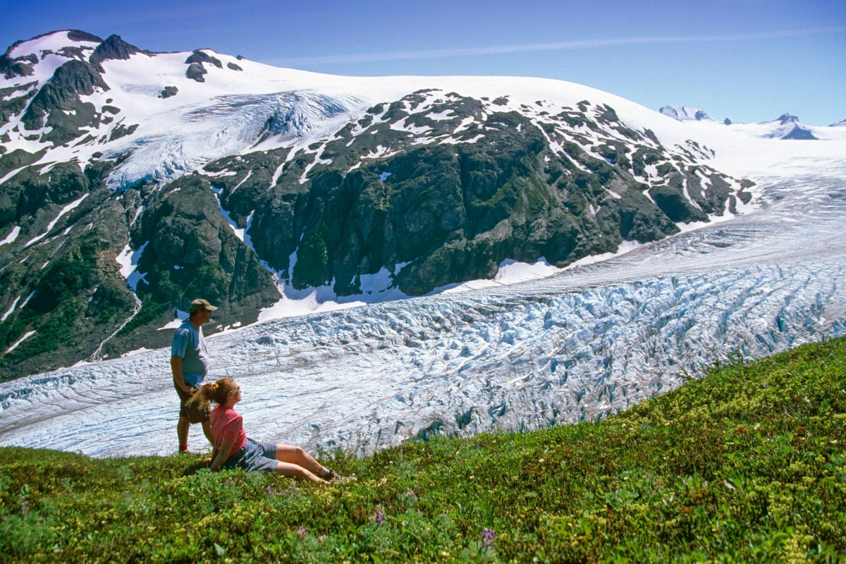 seward alaska exit glacier and the harding ice fields